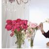 母亲节礼物指南超过100美元的房屋礼物