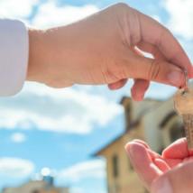租户需求连续第三个月上升