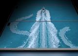 GalaxyS10令人惊叹的显示屏