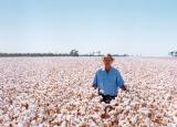 百年一遇的机会购买新南威尔士州棉花农场