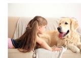 与孩子和宠物一起无压力搬家的重要提示