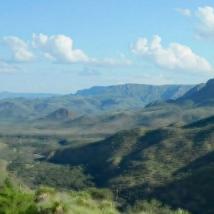 德克萨斯州东北部的土地销售在涌向农村的过程中增长了30%以上