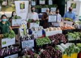 Tropicana向十家慈善机构捐赠了超过两吨的新鲜农产品