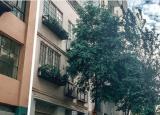 维多利亚女王市场公寓楼风靡一时