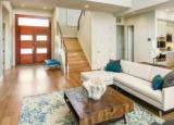 哪些城市最适合开展Airbnb业务