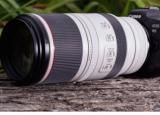 佳能RF 100-500mm F4.5-7.1 L IS USM相机评测